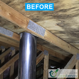 Attic Mold Removal in Longueuil, Mold Problems