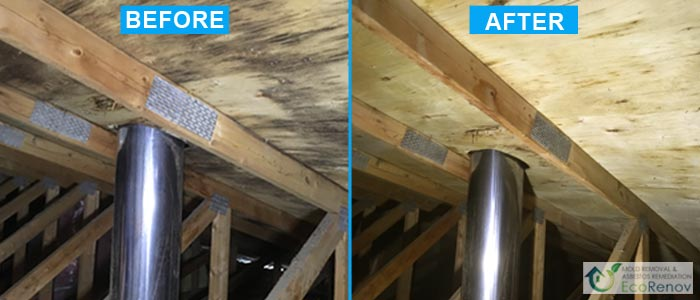Attic Mold Removal in Montreal (Before/After #2)