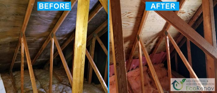Attic Mold Removal in Montreal (Before/After #9)