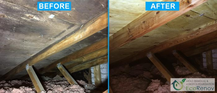 Mold Removal, Rosemere (Before/After #14)