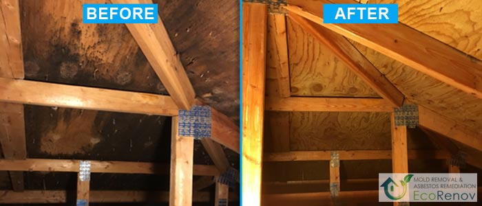 Mold Removal, Terrebonne (Before/After #6)