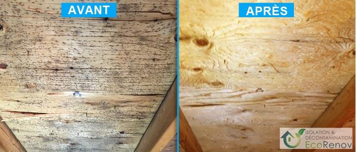 Décontamination de moisissures, Terrebonne (avant/après #8)