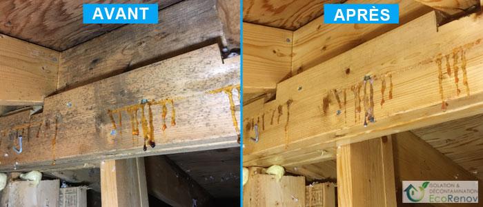 Décontamination moisissures entretoit, moisissures sur fermes de toit (chevrons)