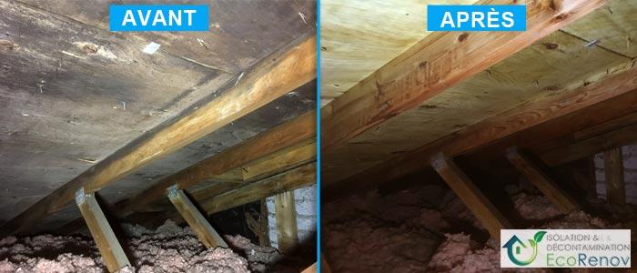 Décontamination moisissures entretoit : ventilation de toiture insuffisante