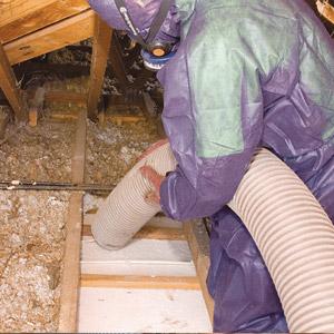Enlèvement et décontamination de vermiculite dans un grenier