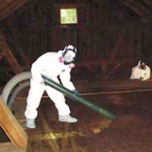 Entreprise pour enlever la vermiculite au grenier